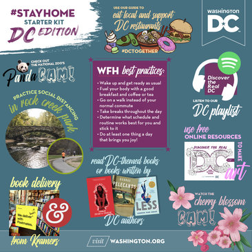 Stay Home DC Edition Vision Board
