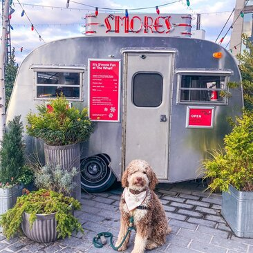 @coco_dcdoodle - The Wharf s'more truck