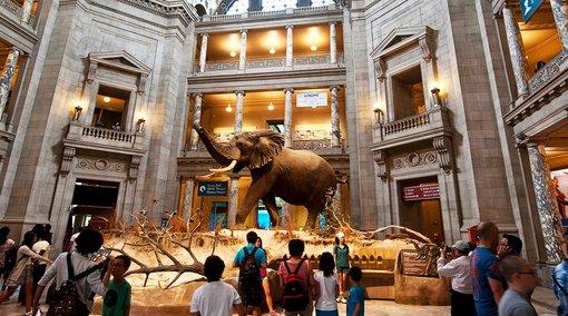 Smithsonian National Mall Tours