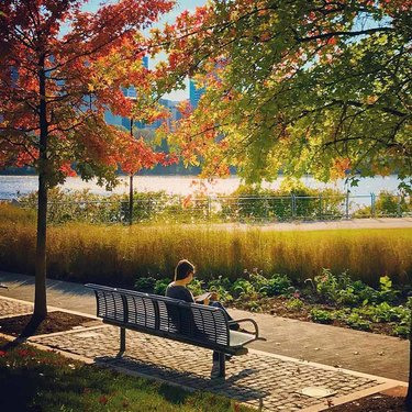 @guayilandia - Woman reading amongst fall foliage on the Georgetown Waterfront - Things to do in Georgetown Washington, DC