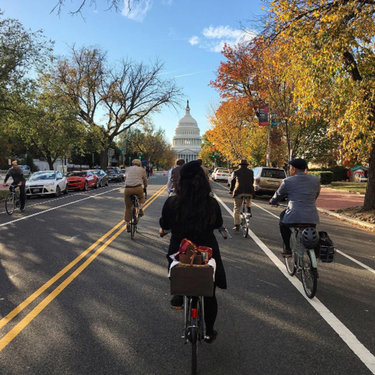 @jennrightmeow - Fall biking on Capitol Hill - Things to do in Washington, DC