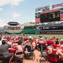 Washington Nationals Brunch on the Baselines at Nationals Park - Best summer events in Washington, DC