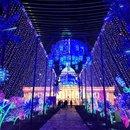 LightUP Fest in Loudon County, Virginia - Winter events near Washington, DC