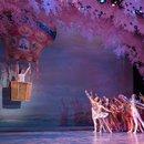 The Washington Ballet's Nutcracker - Holiday Performances in Washington, DC