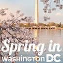 Spring in Washington, DC Sweepstakes - Enter to win a trip to DC