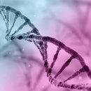 Biotech & Pharma in Washington, DC - Meetings and Conventions in a Flourishing Life Sciences Hub