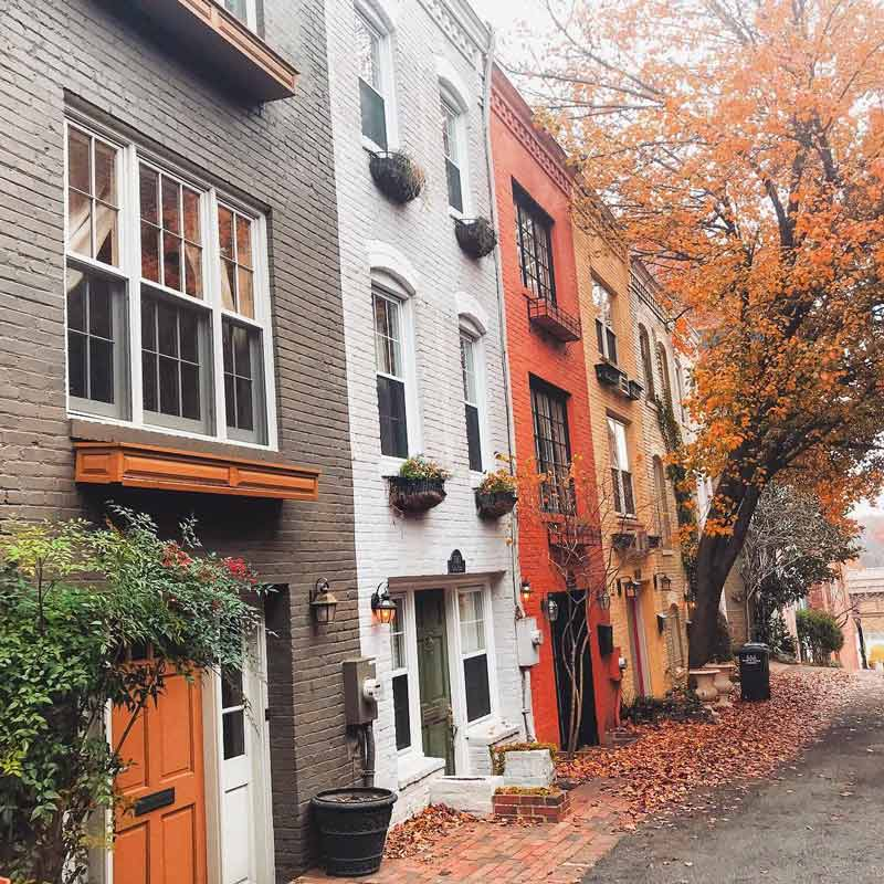 @susubeso - Fall foliage in Washington, DC's historic Georgetown neighborhood