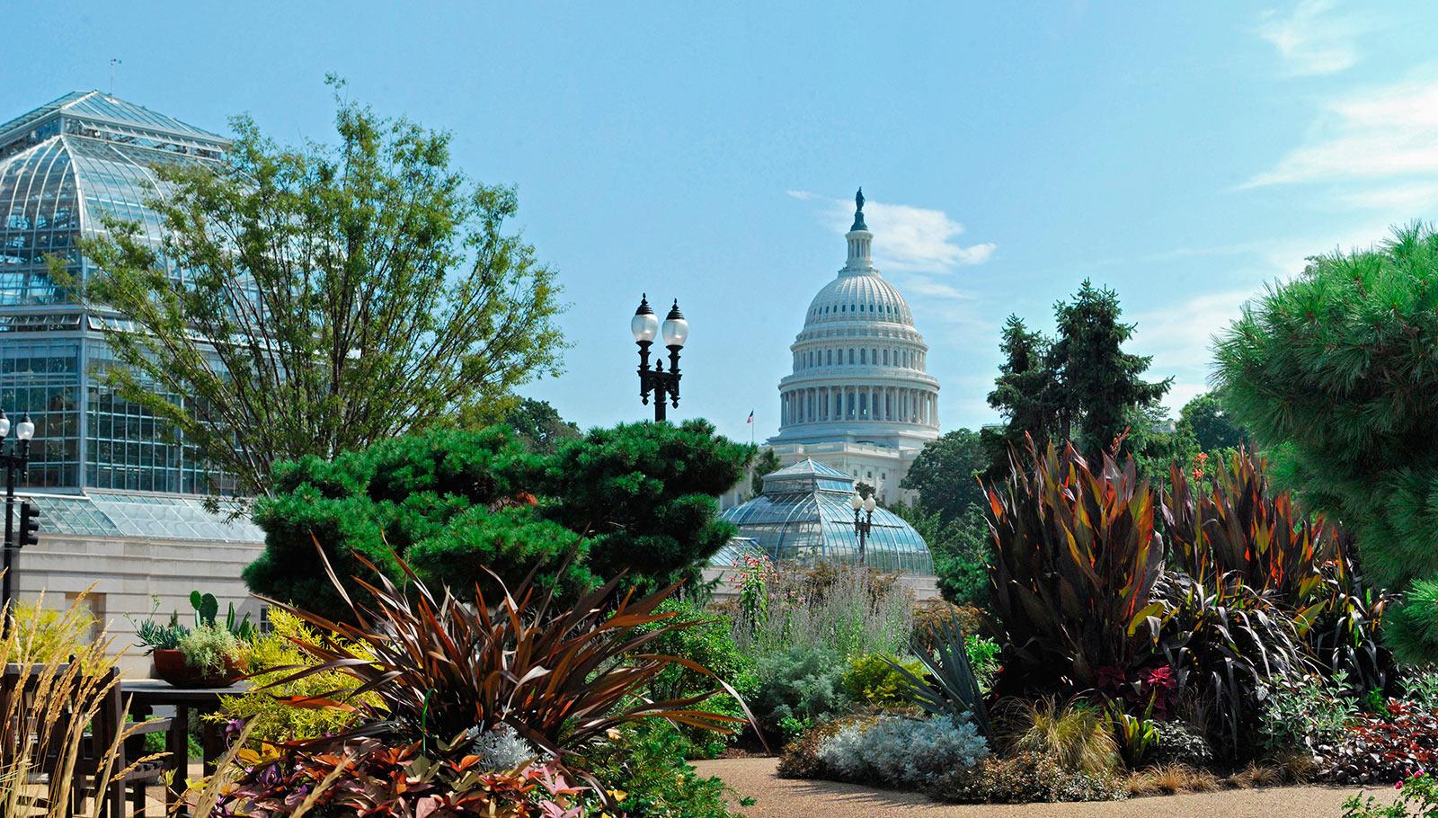 Plantes Pour Jardin Contemporain 12 parcs et jardins qui vous envoûteront à washington, dc