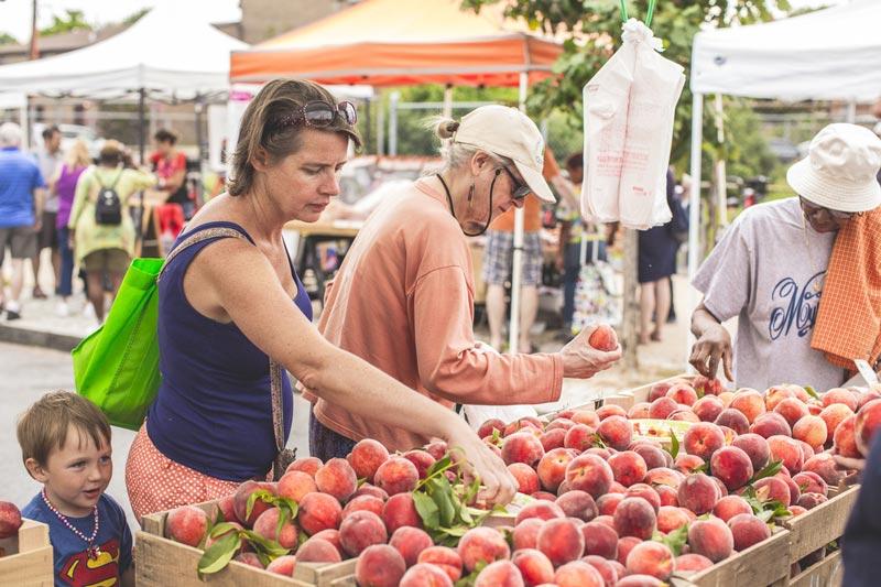 Best Farmers' Markets for Fresh Produce in DC | Washington org