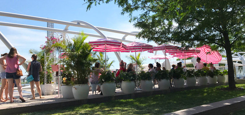 Rosé Garden at Whaley's - Seafood Restaurant on the Capitol Riverfront in Washington, DC