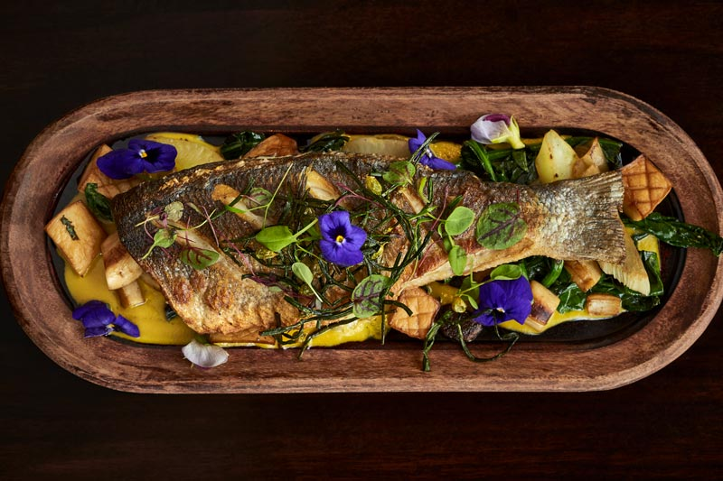 Fish dish at Westend Bistro in the Ritz-Carlton - The best hotels for foodies in Washington, DC