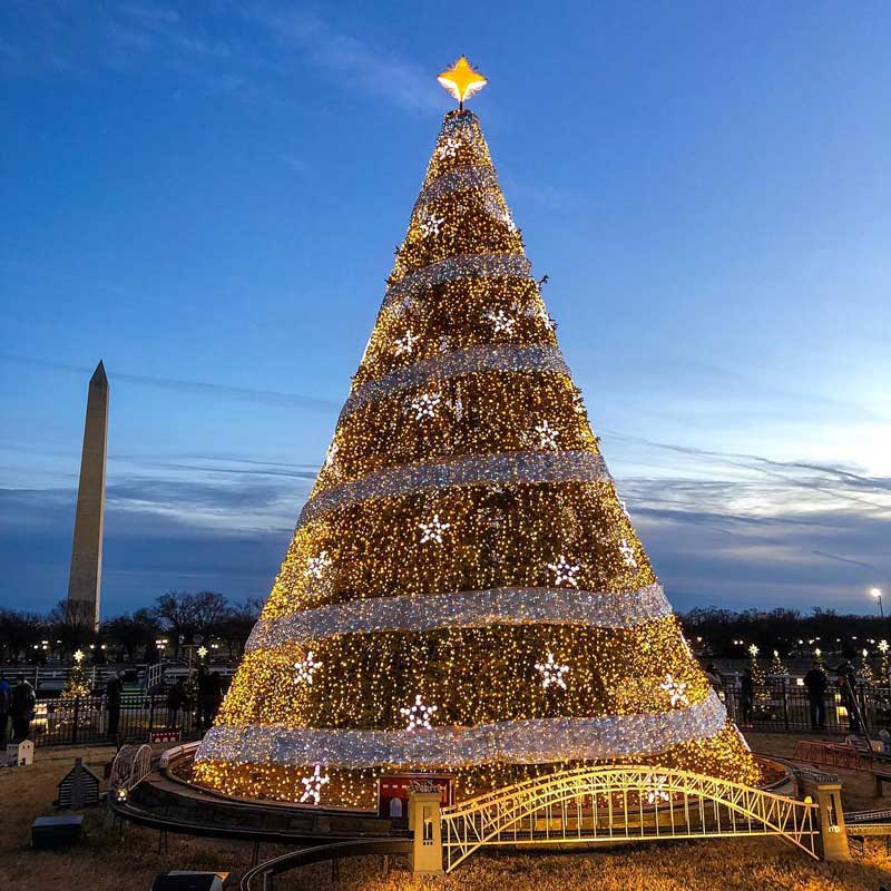 @wwwchris - Visitors at the National Christmas Tree on the National Mall - Free winter things to do in Washington, DC