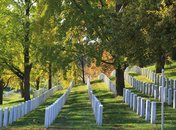 Arlington National Cemetery White Gravestones