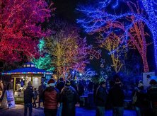 @fiz1point5 - ZooLights winter holiday celebration at Smithsonian National Zoo - Free family friendly things to do in Washington, DC